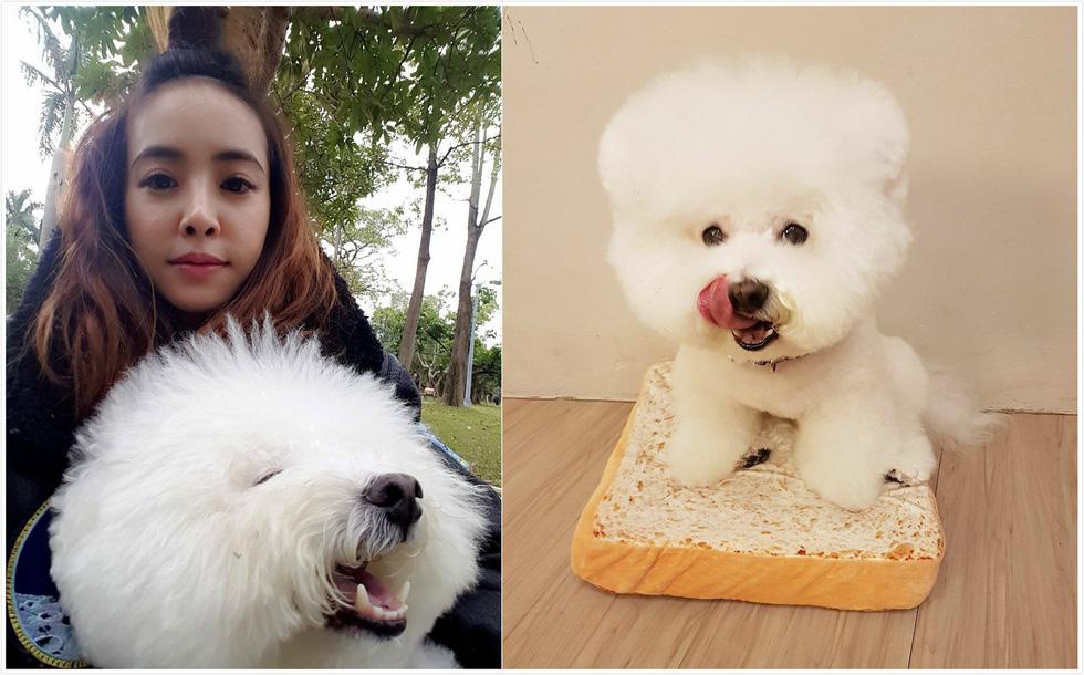 Điểm danh các nghệ sĩ Hoa ngữ tình nguyện làm sen cho chó - Ảnh 5.