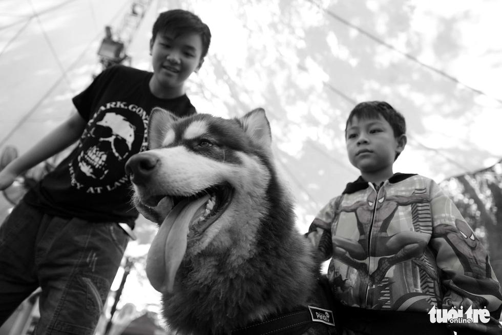 Những hình ảnh của con người với những chú chó - Ảnh 5.