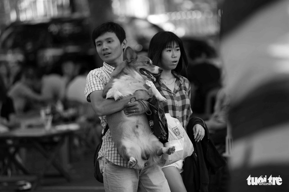 Những hình ảnh của con người với những chú chó - Ảnh 6.