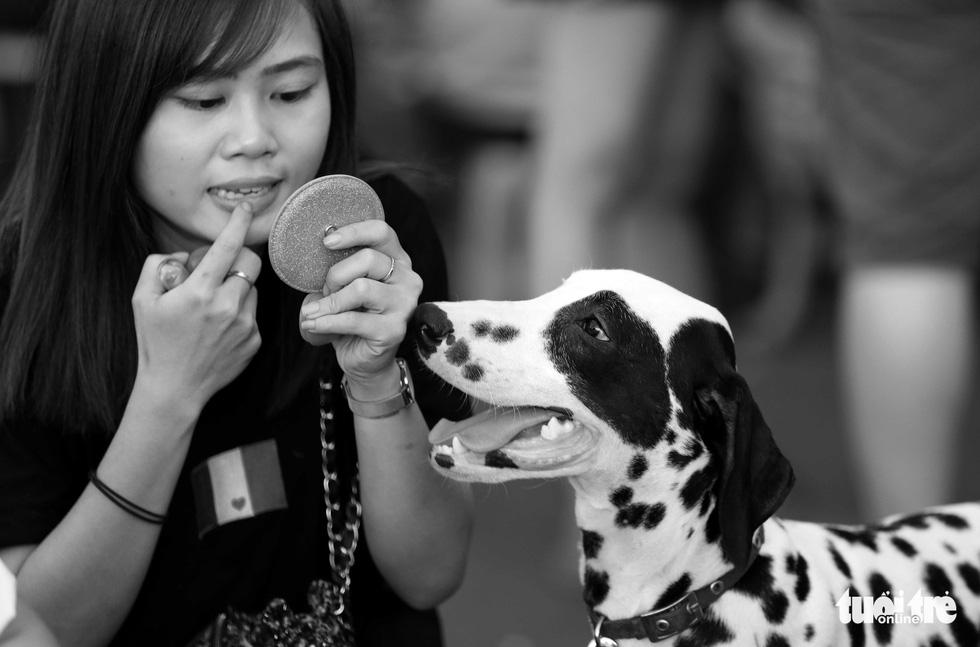 Những hình ảnh của con người với những chú chó - Ảnh 7.