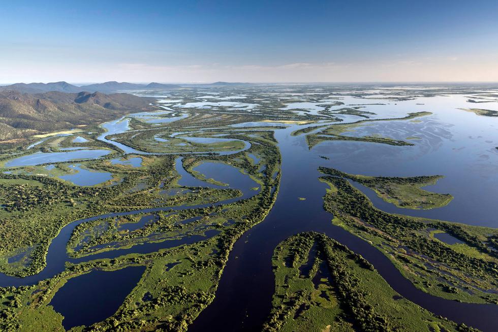 Vẹt nựng nhau ở vùng đất ngập nước nhất thế giới - Ảnh 1.