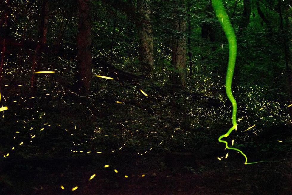 Những 'kỳ quan tự nhiên' đầy sắc màu - Ảnh 4.