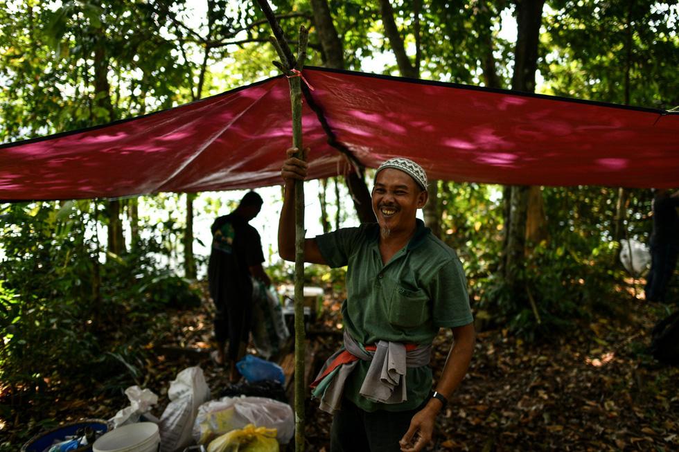 Săn mật ong trên những ngọn cây chọc trời ở Malaysia - Ảnh 6.