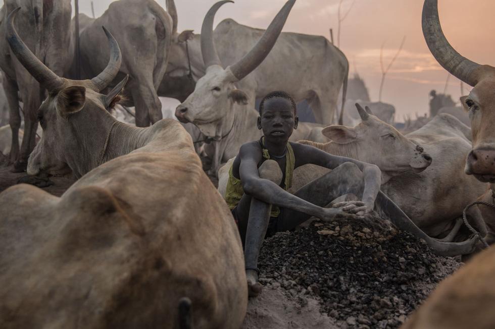 Trải nghiệm cuộc sống chăn bò của người Dinka ở Nam Sudan - Ảnh 13.