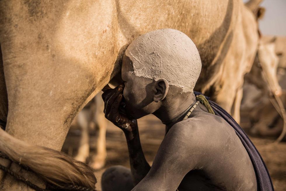 Trải nghiệm cuộc sống chăn bò của người Dinka ở Nam Sudan - Ảnh 2.