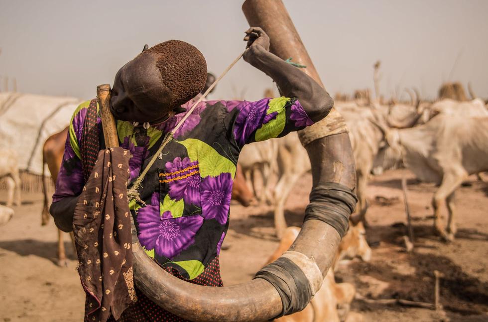 Trải nghiệm cuộc sống chăn bò của người Dinka ở Nam Sudan - Ảnh 9.