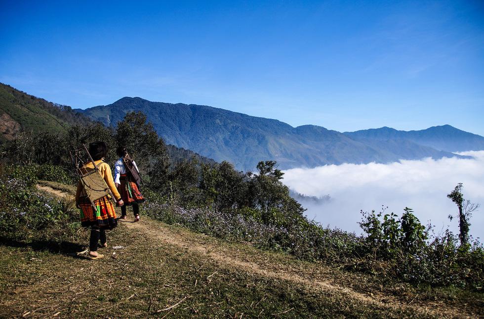 Bản sắc Việt: Thả hồn vào  mây núi Tà Xùa - Ảnh 1.
