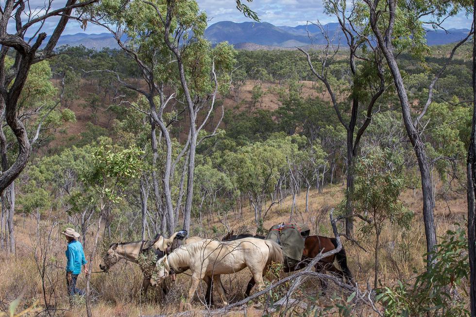 Người phụ nữ chinh phục tuyến đường mòn dài nhất Úc - Ảnh 10.