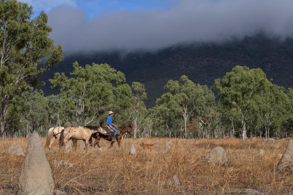 Người phụ nữ chinh phục tuyến đường mòn dài nhất Úc - Ảnh 13.