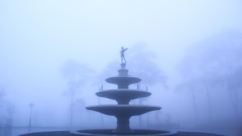 Sương mù tan, Tam Đảo hiện ra lạ lẫm - Ảnh 3.