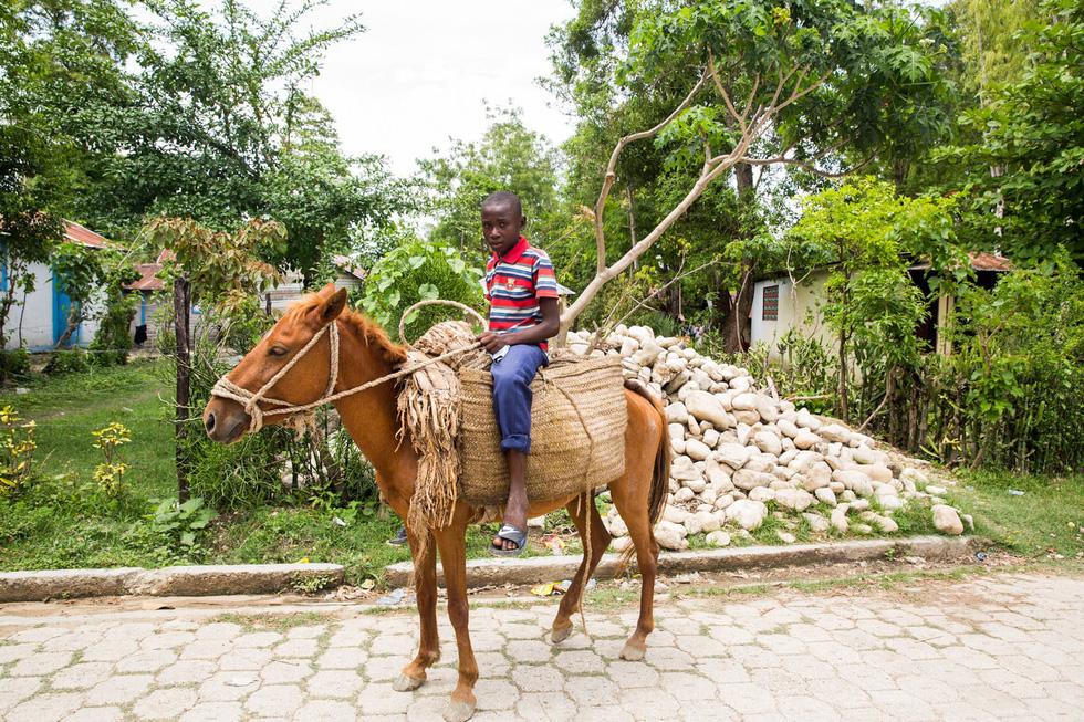 Những hình ảnh sống động từ Haiti - Ảnh 15.