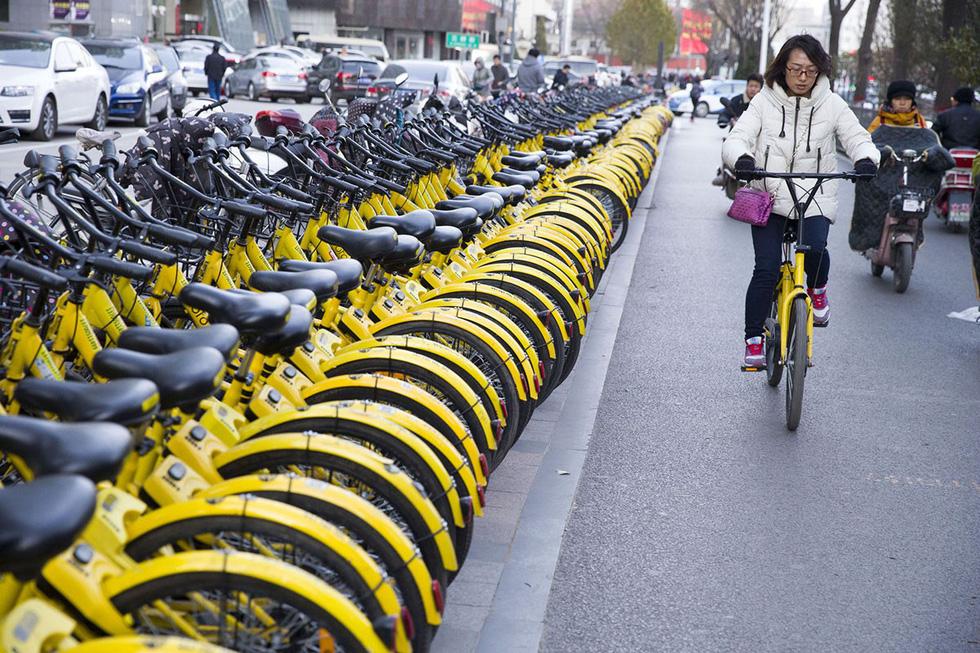 Những núi xe đạp bị vứt bỏ ở Trung Quốc - Ảnh 1.