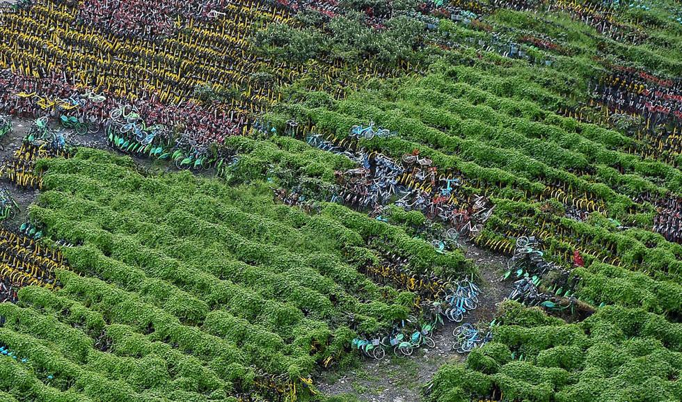 Những núi xe đạp bị vứt bỏ ở Trung Quốc - Ảnh 13.