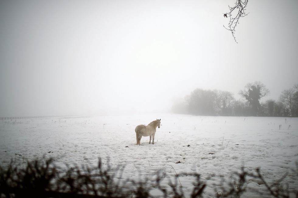 Thế giới trong tuần qua ảnh: tuyết rơi trắng trời châu Âu - Ảnh 1.