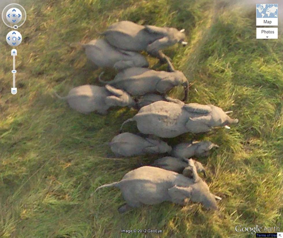 24 ảnh đảm bảo độc lạ từ Google Earth - Ảnh 17.