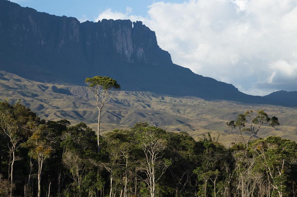 Hòn đảo trên trời kỳ ảo ở Venezuela - Ảnh 8.