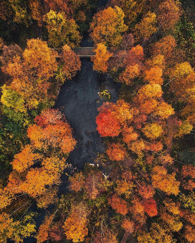Đảo 'bốn mùa' Phần Lan đẹp mê hồn nhìn từ trên cao - Ảnh 12.
