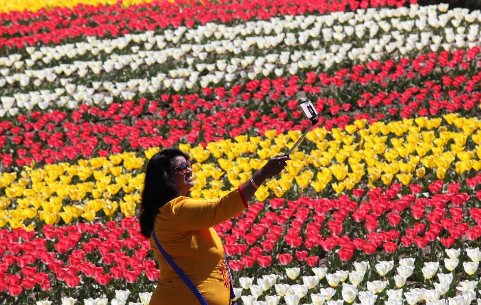 Ngất ngây hoa xuân nở rộ khắp thế giới - Ảnh 12.