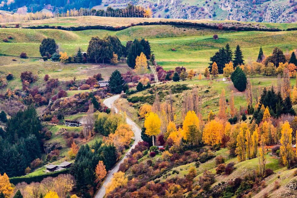 New Zealand - mùa thu mê đắm lòng người - Ảnh 13.