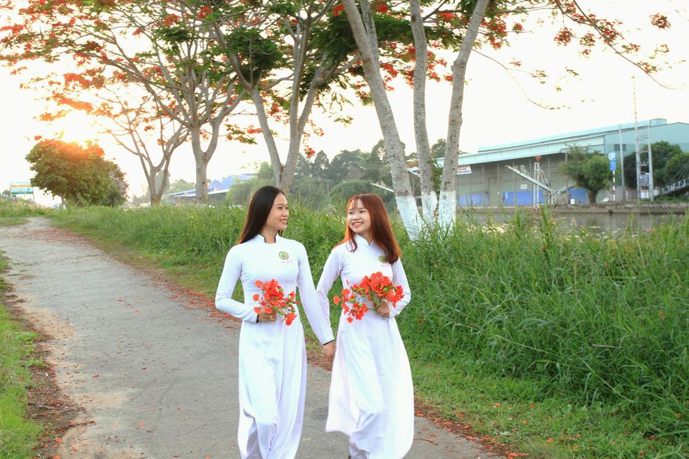 Con đường hoa phượng hút bạn trẻ ở Đồng Tháp - Ảnh 4.