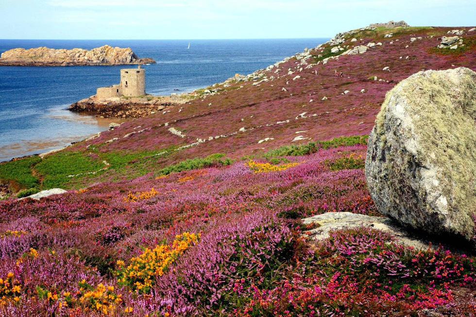 Đến 'xứ sở thần tiên' Cornwall, nghe 'thiên tình cổ' Tristan và Isolde - Ảnh 4.