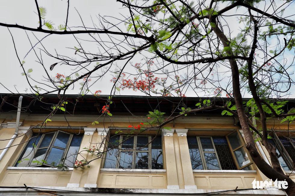 Dinh Thượng Thơ Sài Gòn qua nhiều góc ảnh - Ảnh 15.