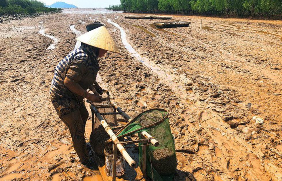 Kinh hoàng biển… rác ở Hậu Lộc, Thanh Hóa - Ảnh 16.