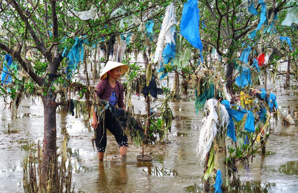 Kinh hoàng biển… rác ở Hậu Lộc, Thanh Hóa - Ảnh 6.