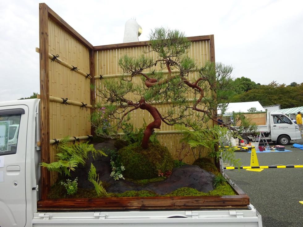 Thiếu đất, người Nhật thi nhau làm vườn trên xe tải - Ảnh 6.