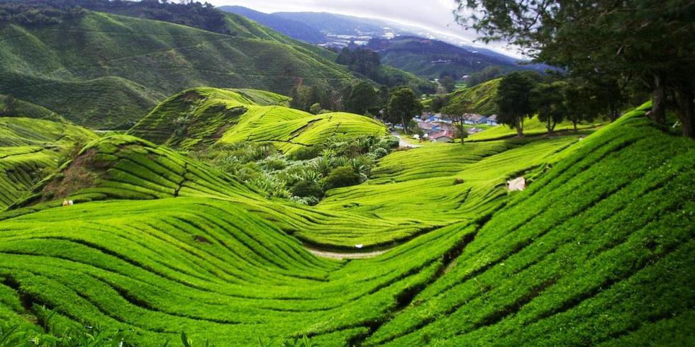 10 địa điểm tuyệt vời để đi bộ ở Đông Nam Á - Ảnh 5.