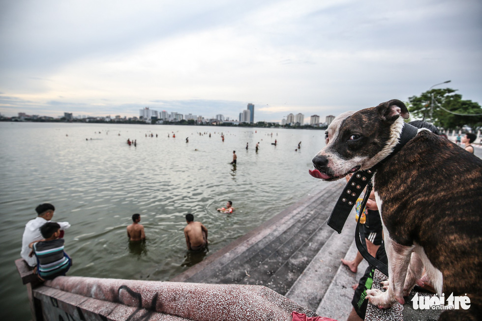 Hà Nội nắng nóng, bãi tắm hồ Tây đông đúc người tắm giải nhiệt - Ảnh 13.