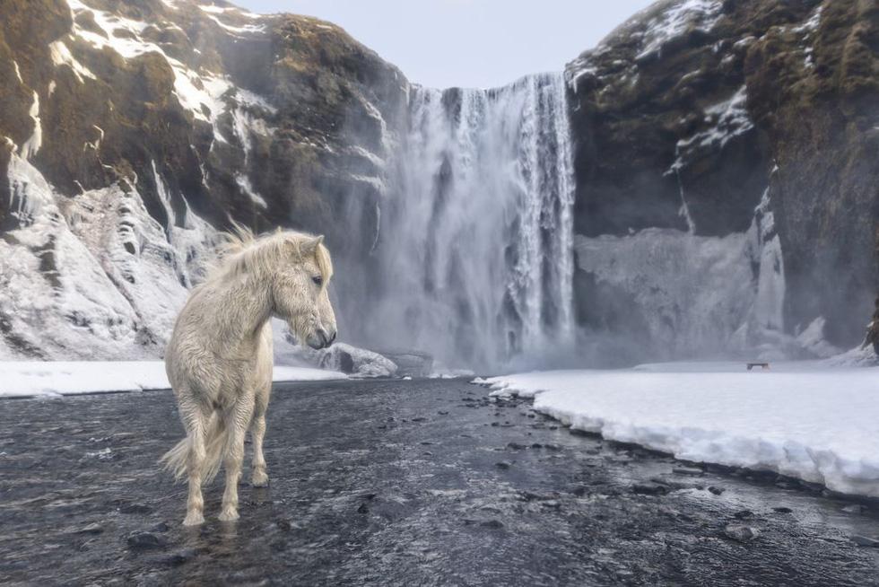 Ảnh thiên nhiên đẹp ngẩn ngơ từ cuộc thi ảnh du lịch NatGeo - Ảnh 3.