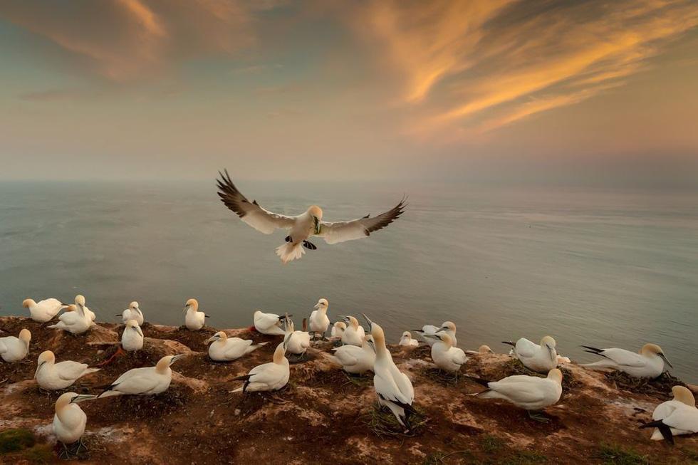 Ảnh thiên nhiên đẹp ngẩn ngơ từ cuộc thi ảnh du lịch NatGeo - Ảnh 9.