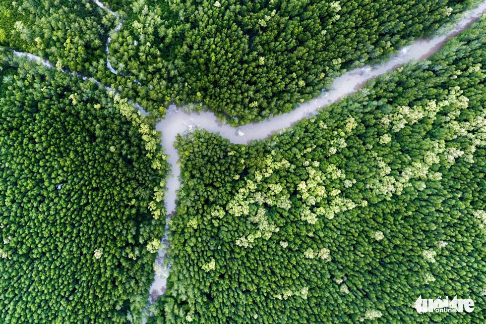 Ngắm khu dự trữ sinh quyển thế giới Mũi Cà Mau từ trên cao - Ảnh 1.