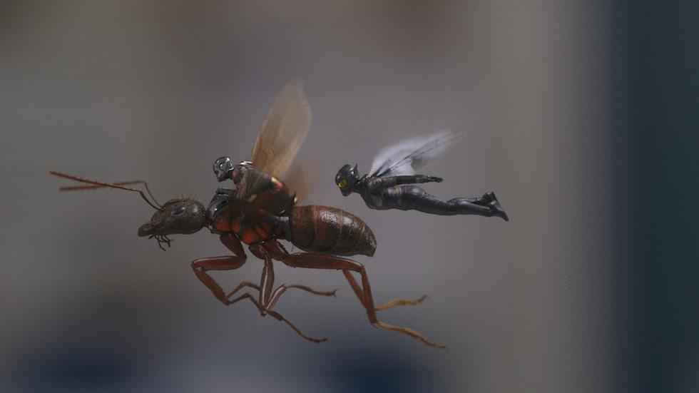 Người Kiến và chiến binh ong: Bom tấn hay nhất từ đầu hè 2018 - Ảnh 4.