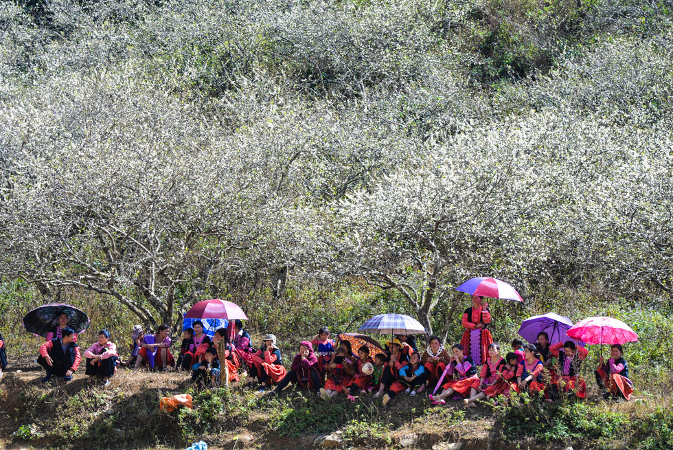 Tết Mông giữa mùa hoa mận - Ảnh 12.