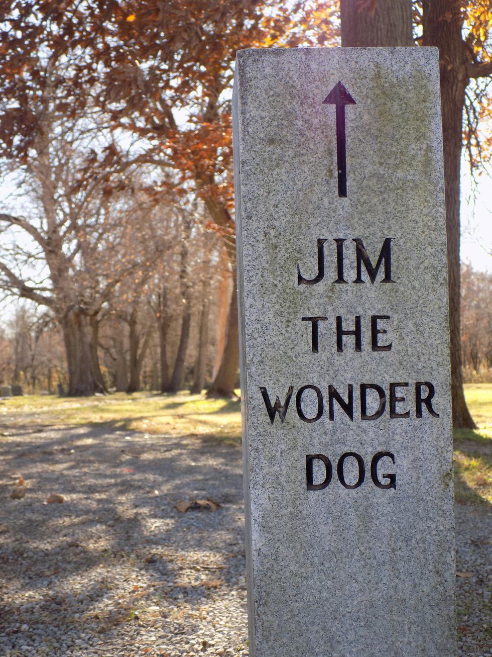 Năm Tuất thăm bảo tàng chú chó Jim - Ảnh 4.