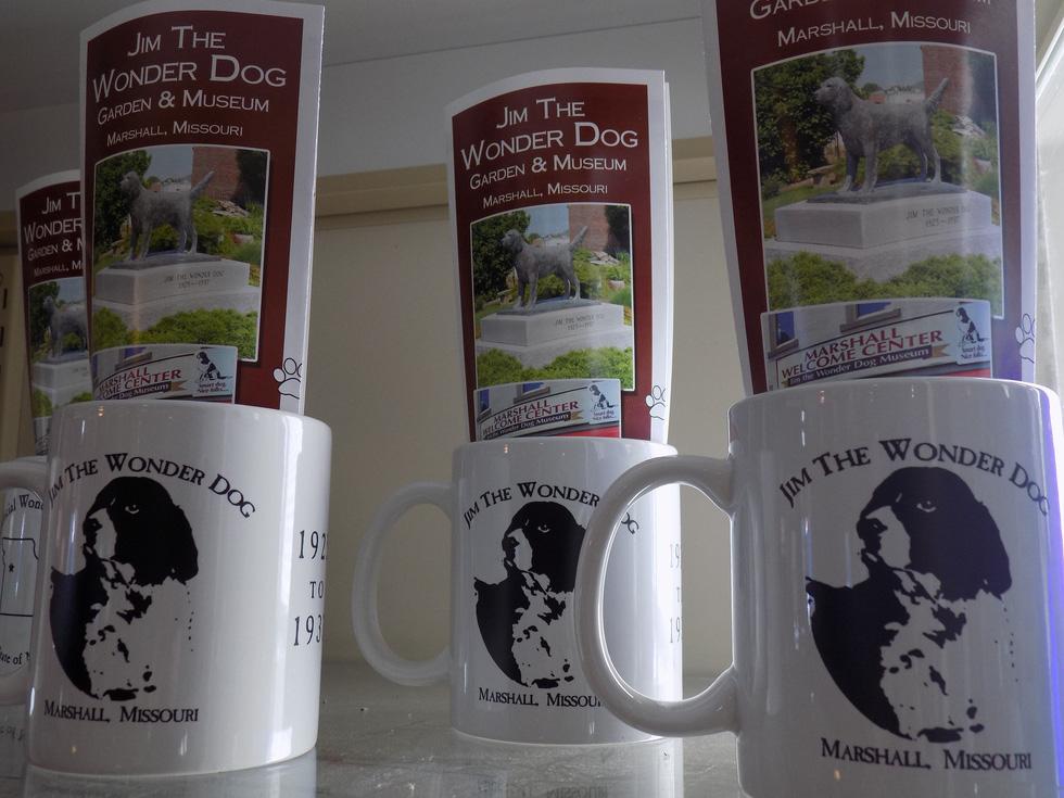 Năm Tuất thăm bảo tàng chú chó Jim - Ảnh 7.