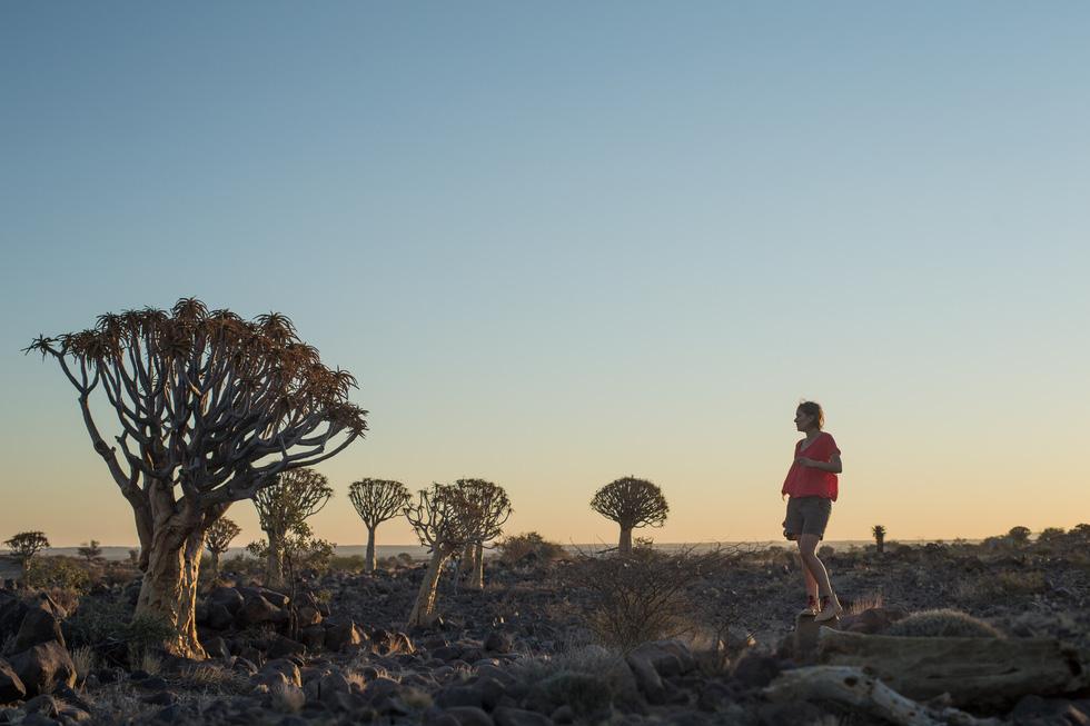 Sắc màu hoang dã Namibia - Ảnh 4.