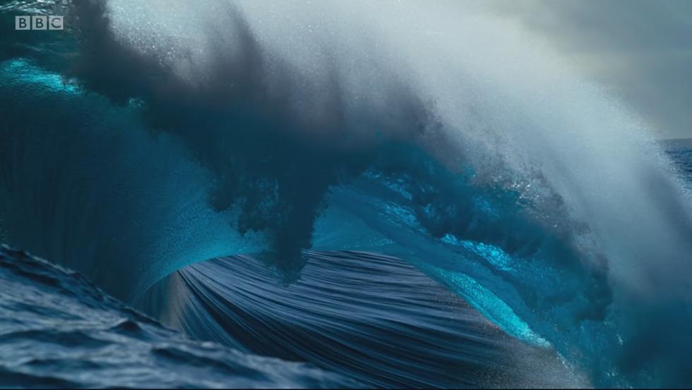 Xem Blue Planet II và ngắm những điều kỳ diệu dưới con sóng - Ảnh 17.