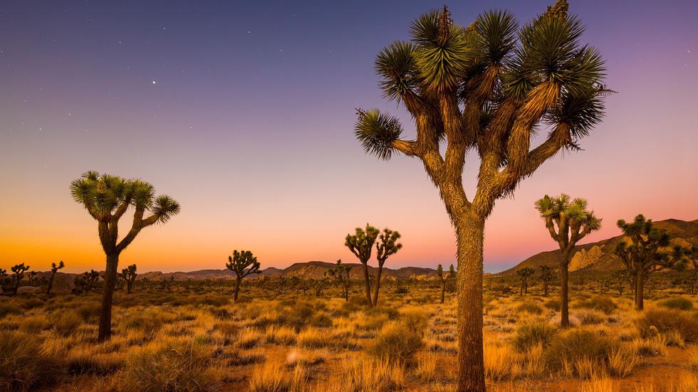 8 sa mạc đẹp như tranh vẽ - Ảnh 5.