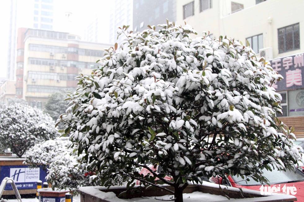 Tuyết phủ trắng nơi U23 Việt Nam đá trận chung kết lịch sử - Ảnh 19.