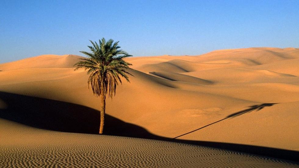8 sa mạc đẹp như tranh vẽ - Ảnh 3.