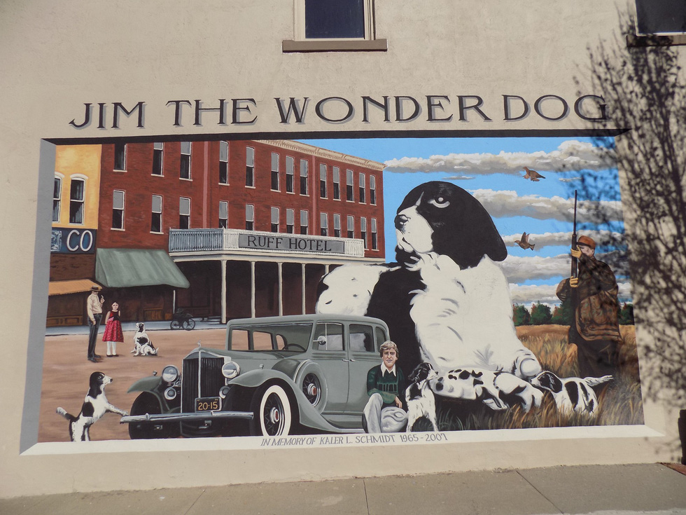 Năm Tuất thăm bảo tàng chú chó Jim - Ảnh 2.