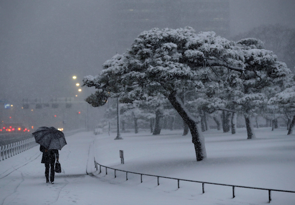 Bão tuyết, núi lửa cùng tấn công nước Nhật trong một ngày - Ảnh 2.