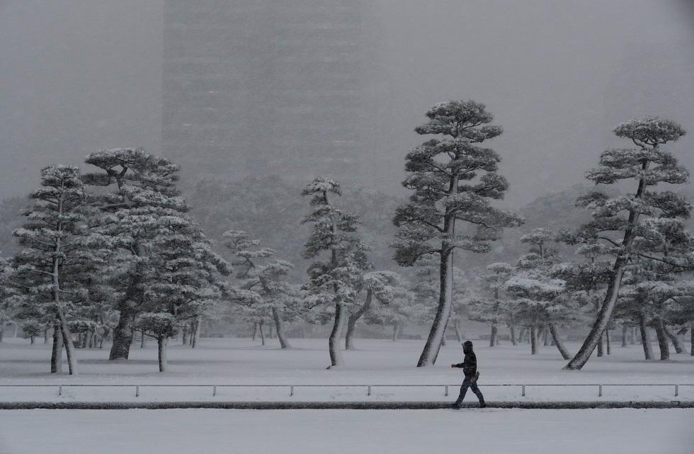 Bão tuyết, núi lửa cùng tấn công nước Nhật trong một ngày - Ảnh 5.