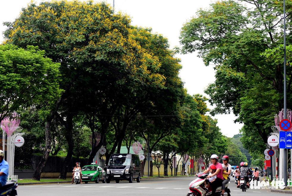 Phố xá Sài Gòn vắng vẻ, se lạnh ngày đầu năm - Ảnh 6.