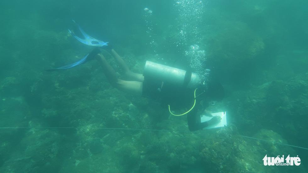 Nữ kiểm lâm dưới đáy biển - Ảnh 10.