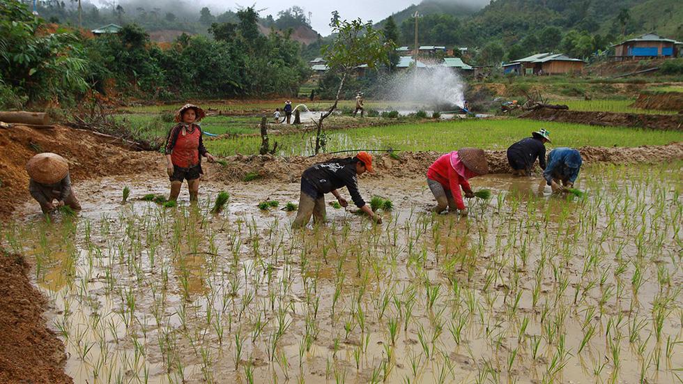 Sau thảm họa sạt lở núi, hồi sinh từ làng mới Khe Chữ - Ảnh 7.
