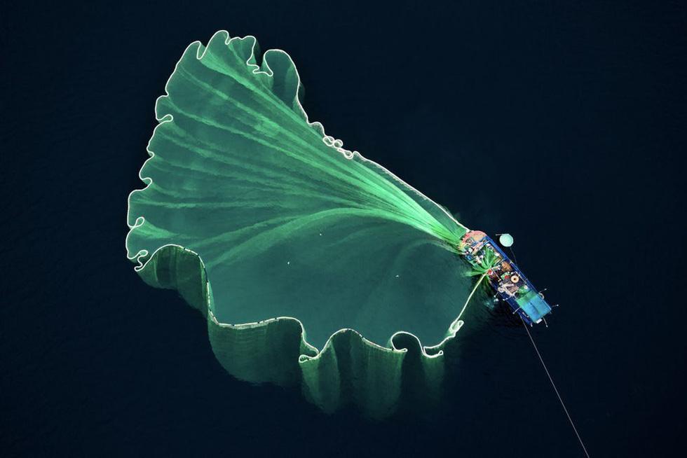 Hoa lưới tại Phú Yên đoạt giải nhì cuộc thi ảnh flycam quốc tế - Ảnh 1.